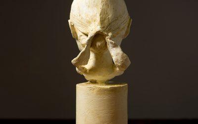 Bust of Mille IV, 2006. Plaster, H 25 cm.